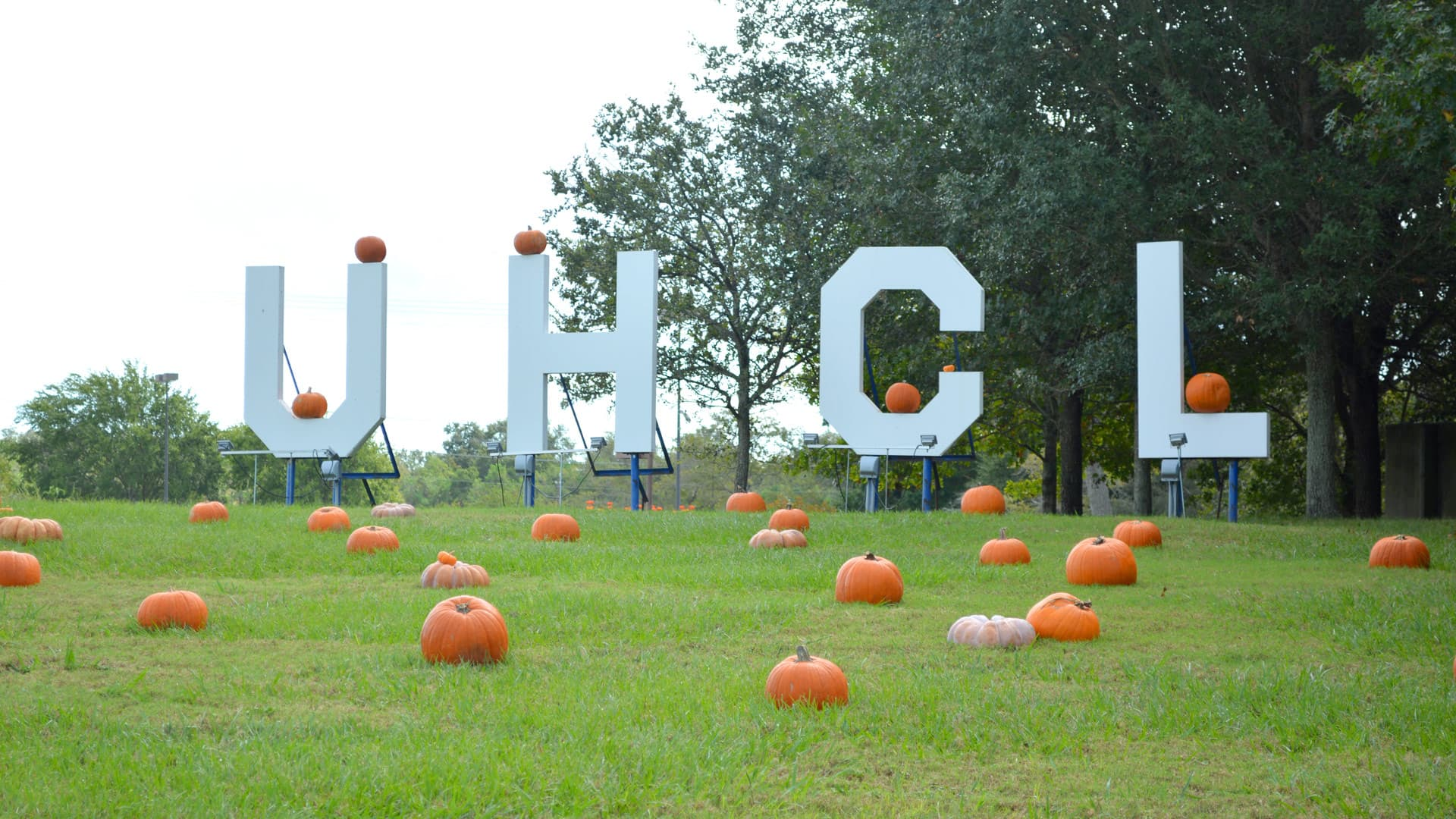 UHCL seeking vendors for upcoming Harvest Fair