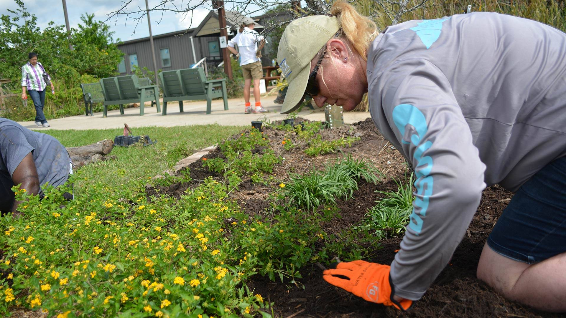 Survey seeks UHCL's community responses to key questions about sustainability on campus