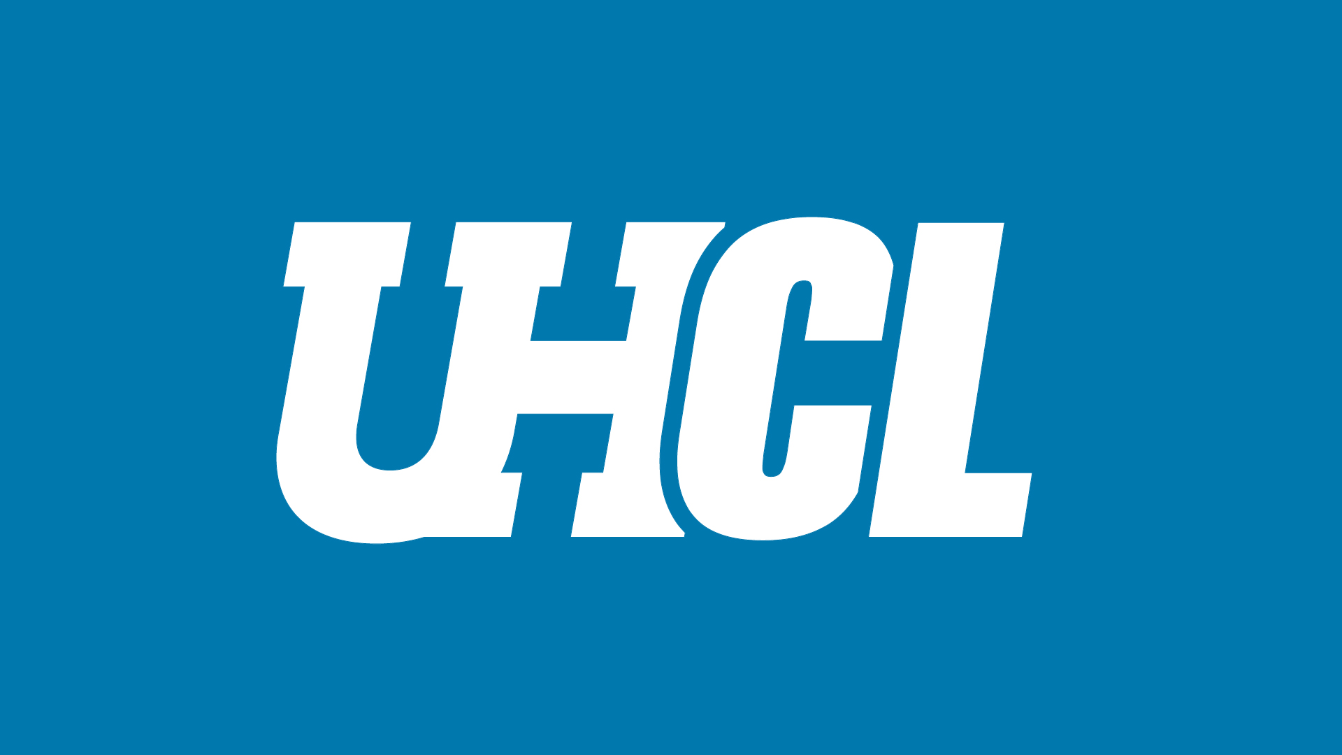 UHCL faculty research briefs